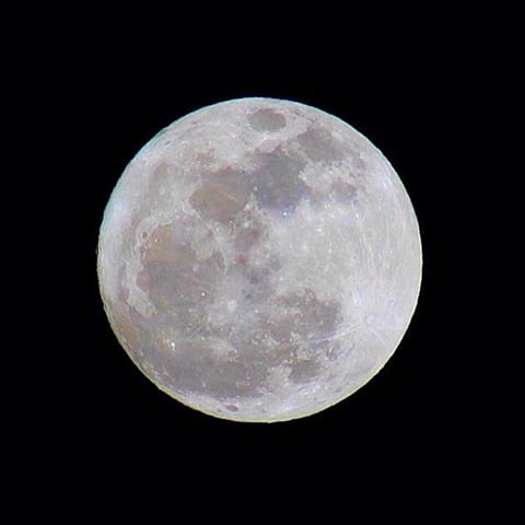 Luna de hiel
