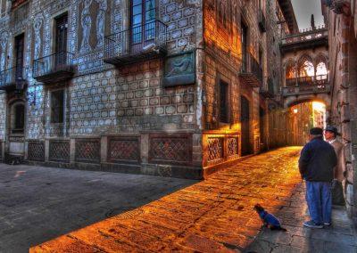 Paseos perrunos. Barri gotic